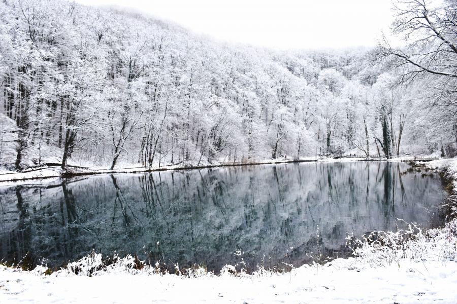 Nature Park Papuk, Croatia