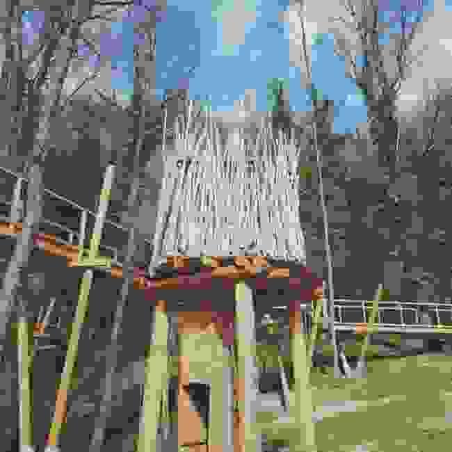 Canopy Walk / Šetnja u krošnjama Canopy Walk / Šetnja u krošnjama