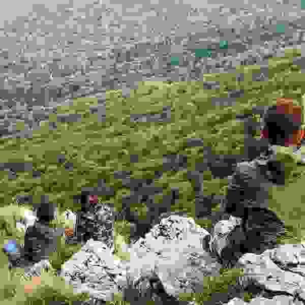 """Mountain climbing Mountain """"Plješevica"""""""