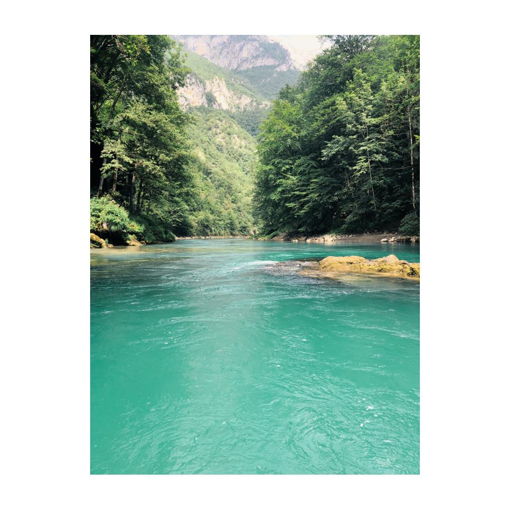 Tara Canyon rafting