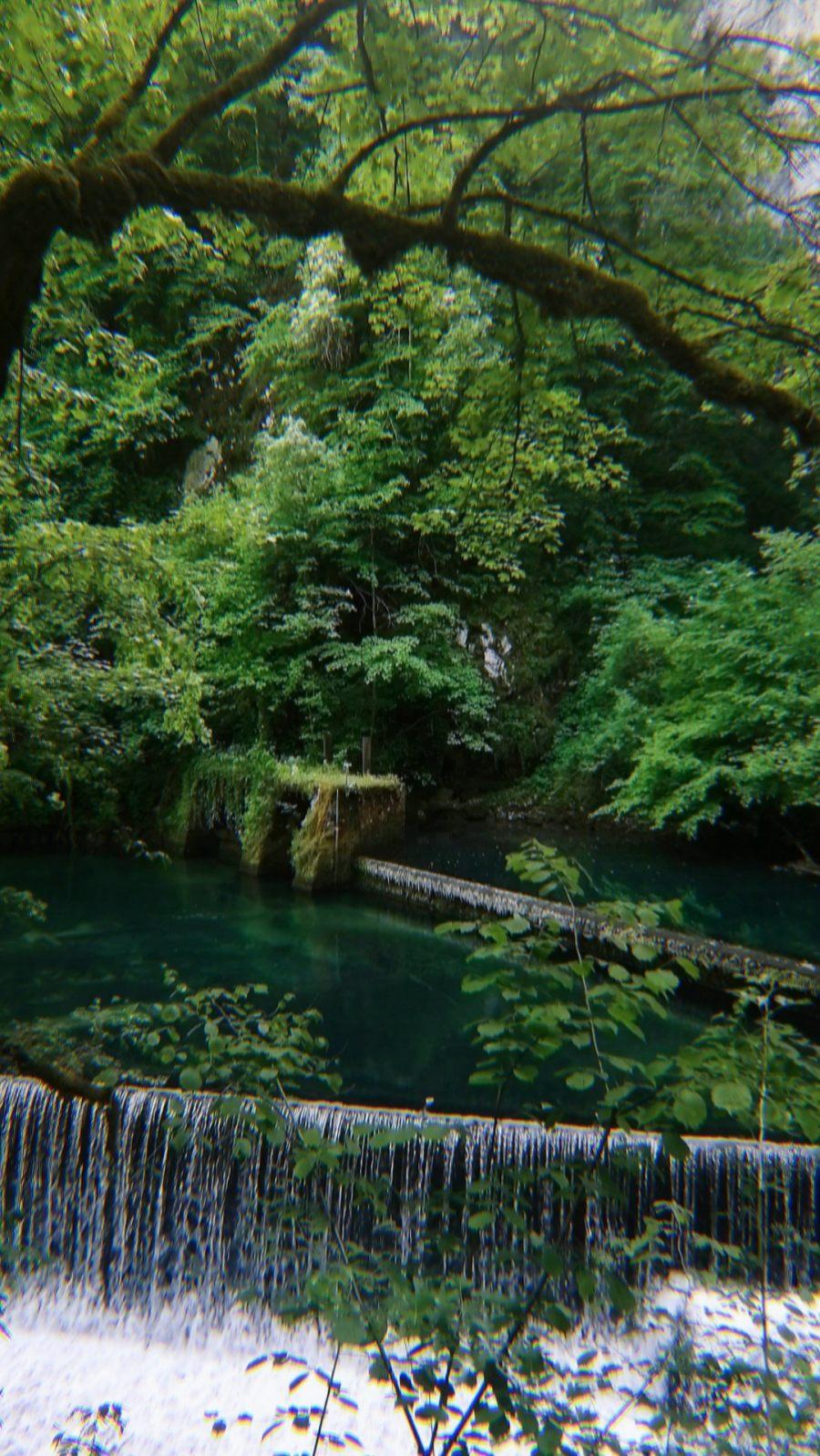Natural phenomenon - the spring of Krušnica